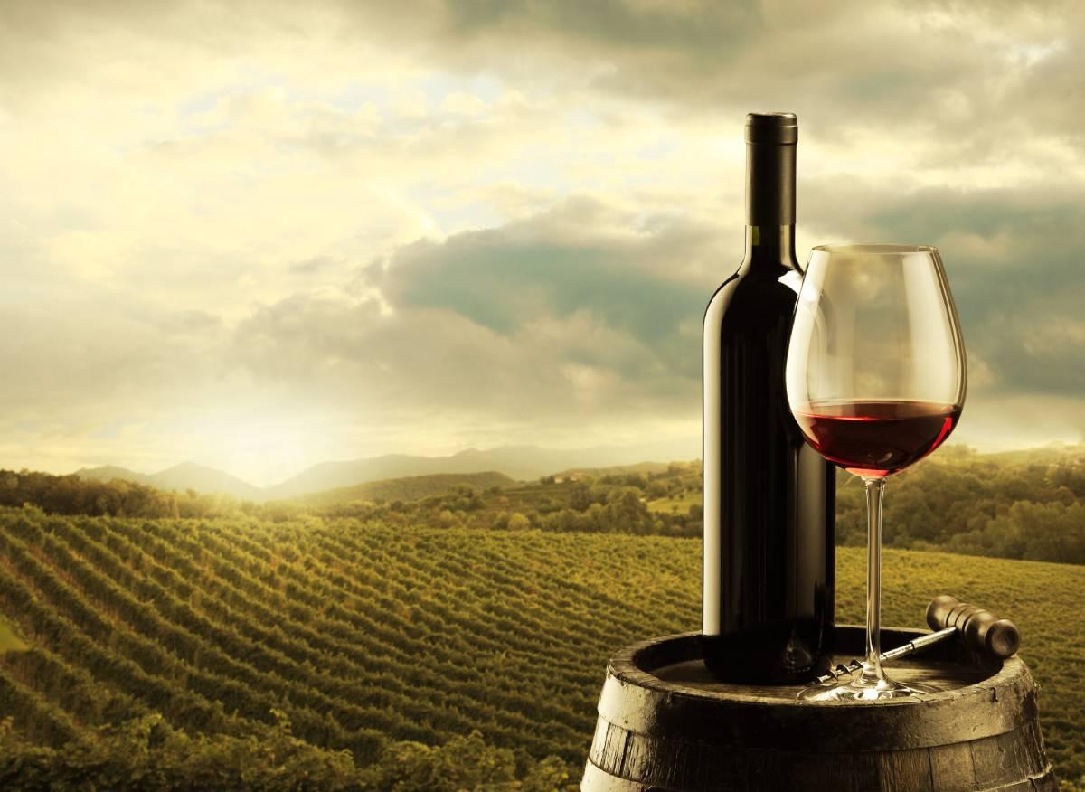 italijansko vino vinograd